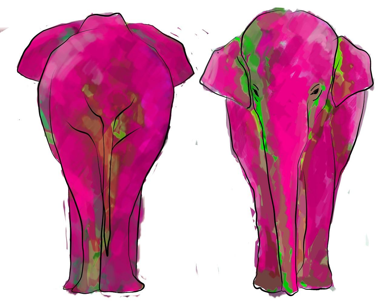 różowy słoń