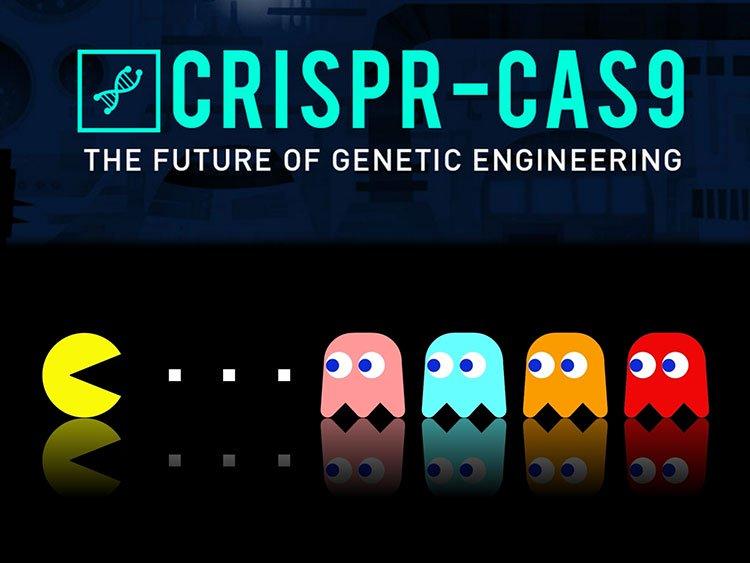 CRISPR-Cas