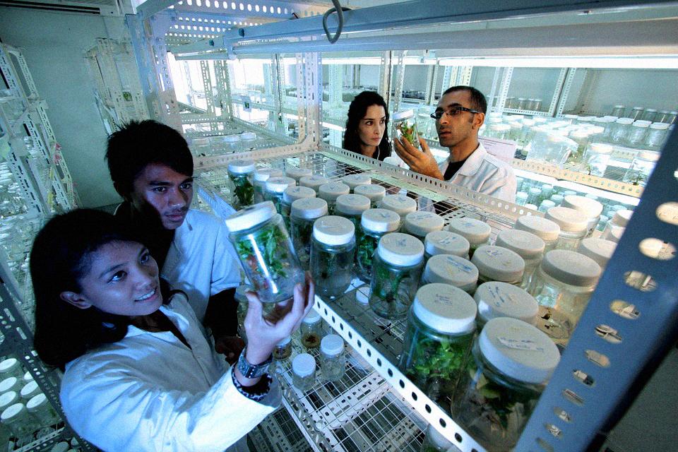jak wygląda laboratorium